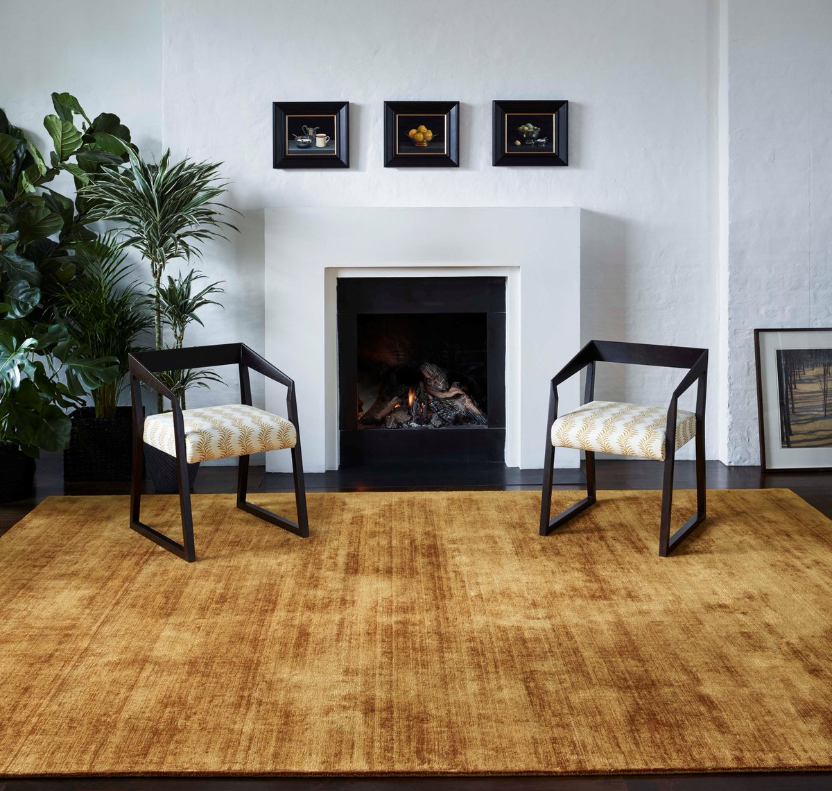 Jacaranda Carpets Satara Gold - available from Flooring 4 You Ltd in Knutsford, Cheshire